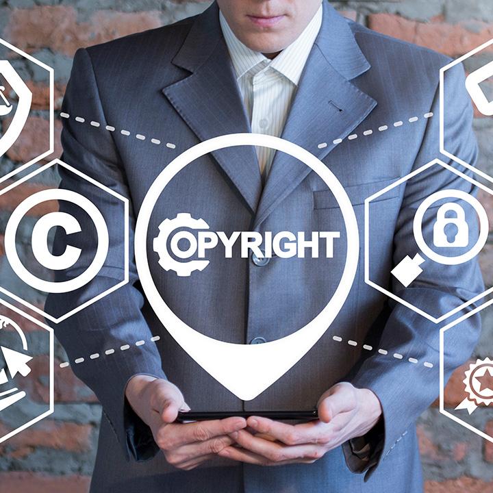 著作権、商標権およびその他の知的所有権